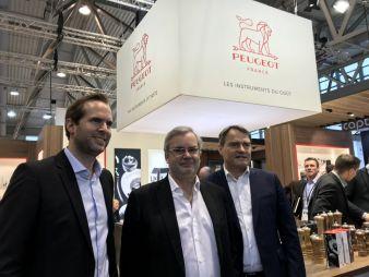Peugeot-Ambiente.jpg