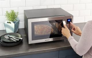 Severin-Pizza-Mikrowelle.jpg