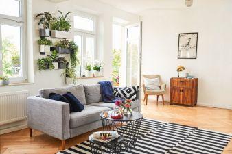 GDA-Lechuza-Green-Wall-Home.jpg