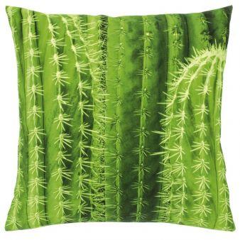 Kissen-Kaktusmotiv.jpg