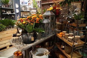 Boltze-Flower-Bazar-Hamburg.jpg