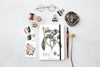 Skoena-Ting-botanic-Notizbuch.jpg