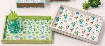 Tabletts-Cactus.jpg