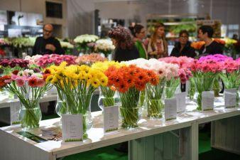 Floradecora-img.jpg