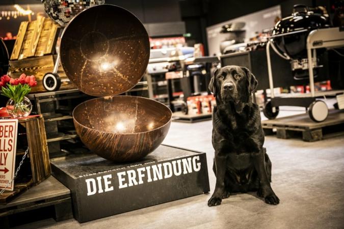 Weber-Store-Ansbach-Hund-Franz.jpg