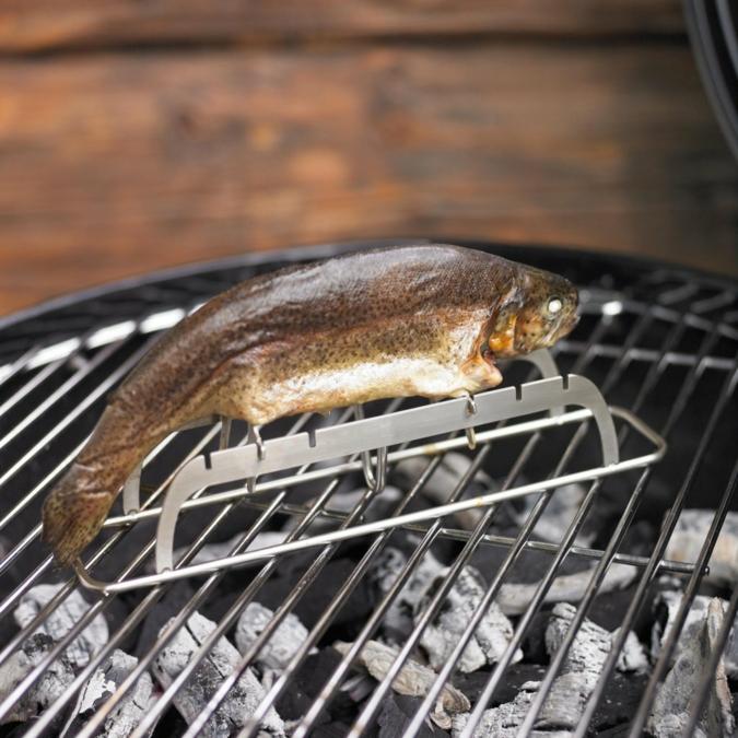 Fischhalter-Roesle.jpg
