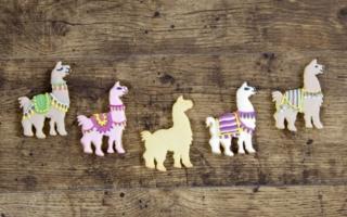 Lamas-Staedter.jpg