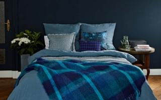 Zoeppritz_Medley bed