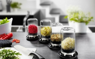 Gefu-Sprouting-Jar-Bivita.jpg