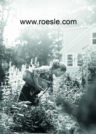 Roesle-Internetauftritt.jpg