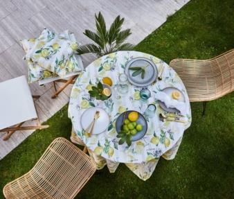 Apelt-Summertime-Zitronen.jpg
