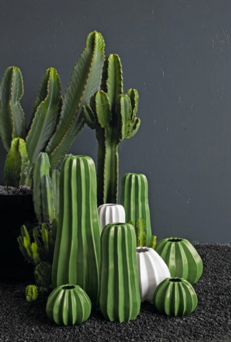 ASA-Vasen-Cactus.jpg