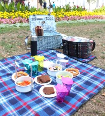 Picknick_Übersicht