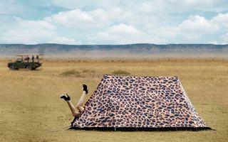 FieldCandy_Leopard