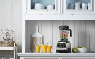 Vitamix_Aprikosen-Smoothie