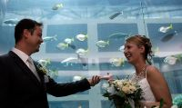 Hochzeit mit Fischen