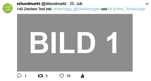 SM_Ansicht_Twitter_Mediadaten